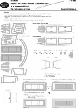 Grumman F-14A/B/D Tomcat EXPERT kabuki masks