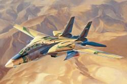 Persian Cat F-14A Tomcat IRIAF