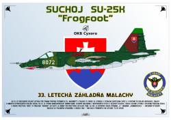 Suchoj Su-25K Frogfoot