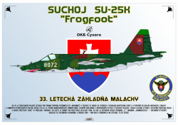 Suchoj Su-25K Frogfoot