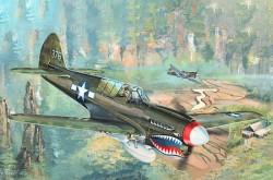 P-40N War Hawk
