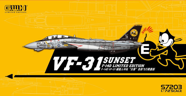 "Grumman F-14D Tomcat VF-31 ""Sunset"" Limited edition"