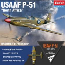 "USAAF P-51 ""North Africa"""