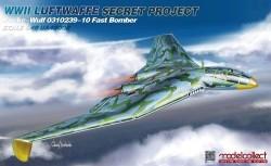 WWII LUFTWAFFE Secret Project Focke-Wulf 0310239-10 Fast Bomber