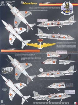 All Harriers 1