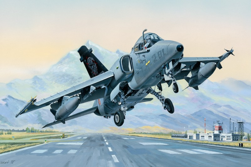 AMX Ground Attack Aircraft