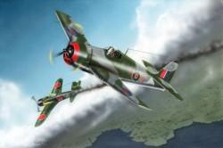 British Fleet Air Arm Hellcat Mk.I